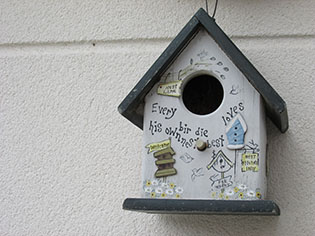 Bird house in garden